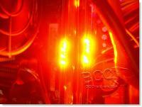 Red Auroa