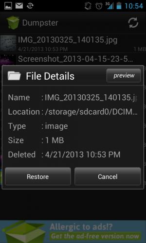 File Details