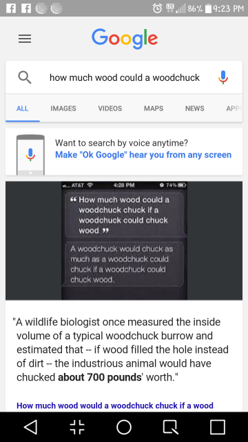 Google Voice Input